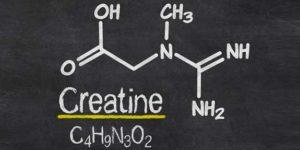 29-creatina